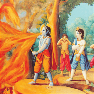 Krsna, the supreme mystic, immediately swallowed up all the flames of the fire.
