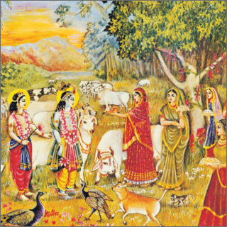 The wives of the brahmanas saw the Supreme Personality of Godhead, and he entered within their hearts through their eyes.